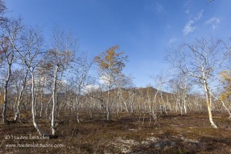 Vallée de Nalychevo au Kamtchatka